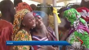 Why Boko Haram released dozens of Chibok girls