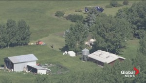 Raw video: Police search rural property north of Calgary