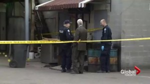 Remains discovered in an east-end Toronto dumpster believed to be that of a woman