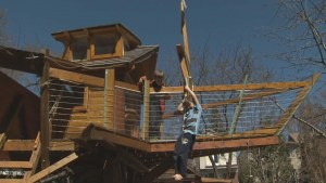 City orders family to take down $30K treehouse