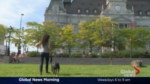 Global News Morning headlines: Thursday, September 22