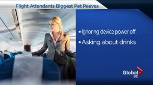 Flight attendants share their biggest pet peeves