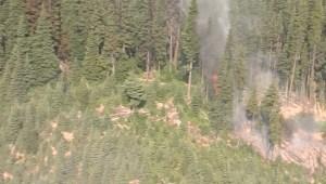 Wildfires burning across B.C.