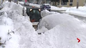 Dig out time: Nova Scotians work to recover from blizzard