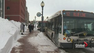 Moncton transit hoping to convince people to ride the bus