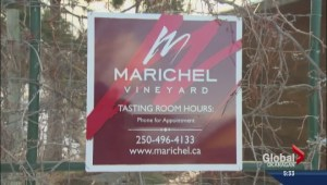 Wineries for sale
