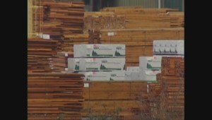 Archive video: Layoffs at Western Forest Products