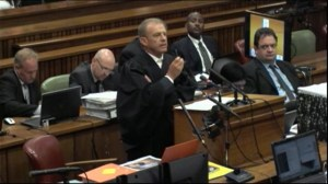Court adjourned after Pistorious breaks down