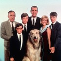 thumbs best television fathers 38