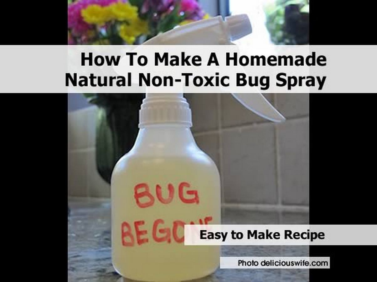 Diy Pest Control Spray How To Make A Homemade Natural Non Toxic Bug Spray