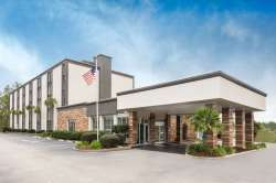 Small Of Pet Friendly Hotels Charleston Sc