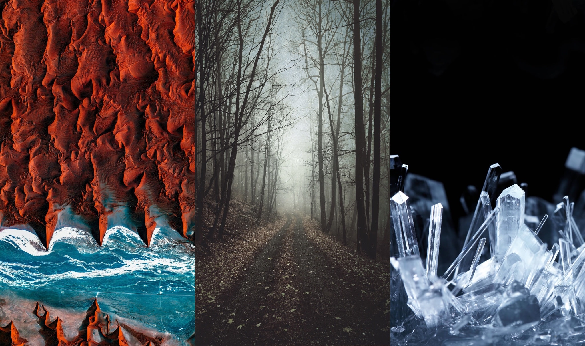 Phone Wallpapers Fall The Best Wallpaper Apps For Iphone