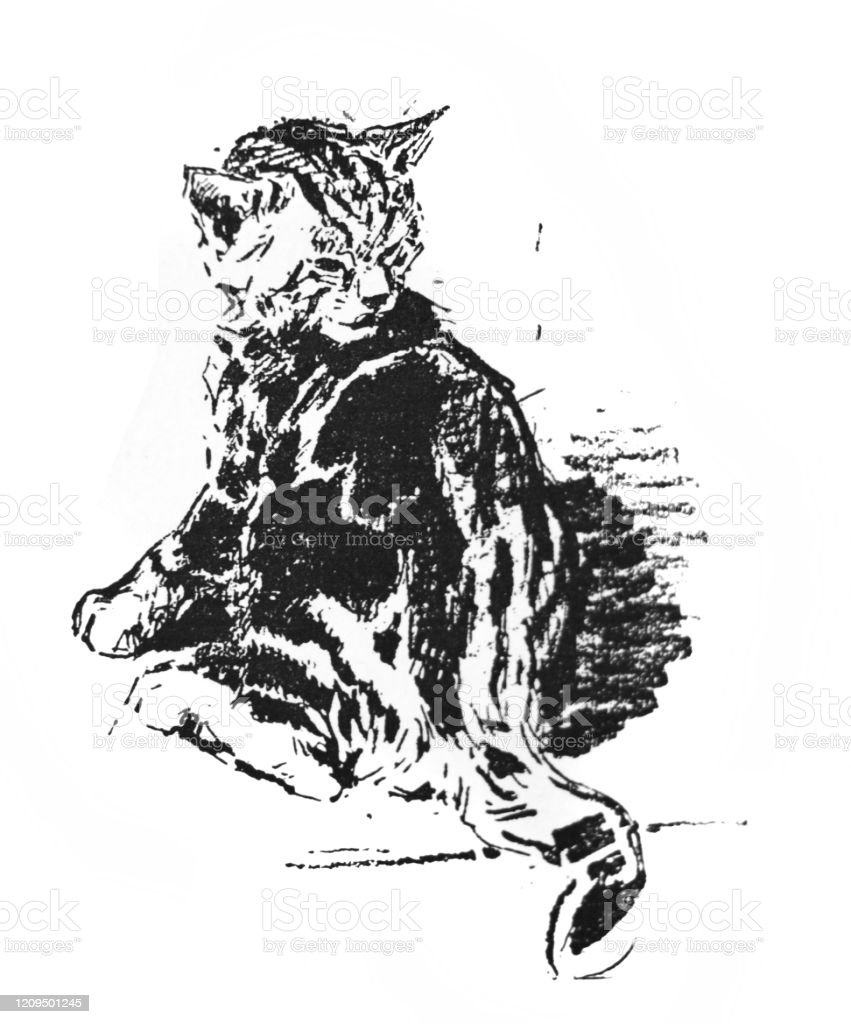 Modernes Bild Picture Of A Gloomy Cat In The Old Book Artistes Modernes By Goupil 1881 Paris Stock Illustration - Download Image Now - Istock