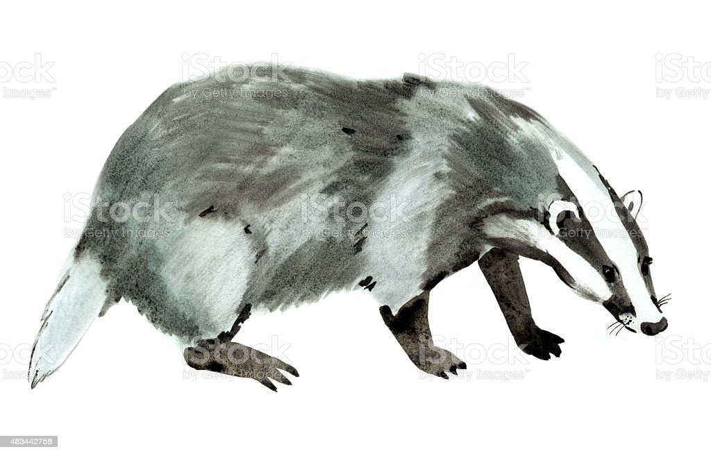 watercolor illustration of a beaver in white background stock illustration
