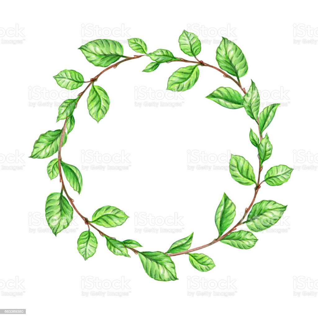 Fall Birch Tree Wallpaper Watercolor Spring Wreath Green Leaves Round Frame Blank