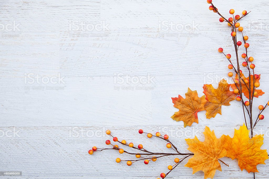 Cute Rustic Fall Wallpapers Royalty Free Thanksgiving Background Pictures Images And