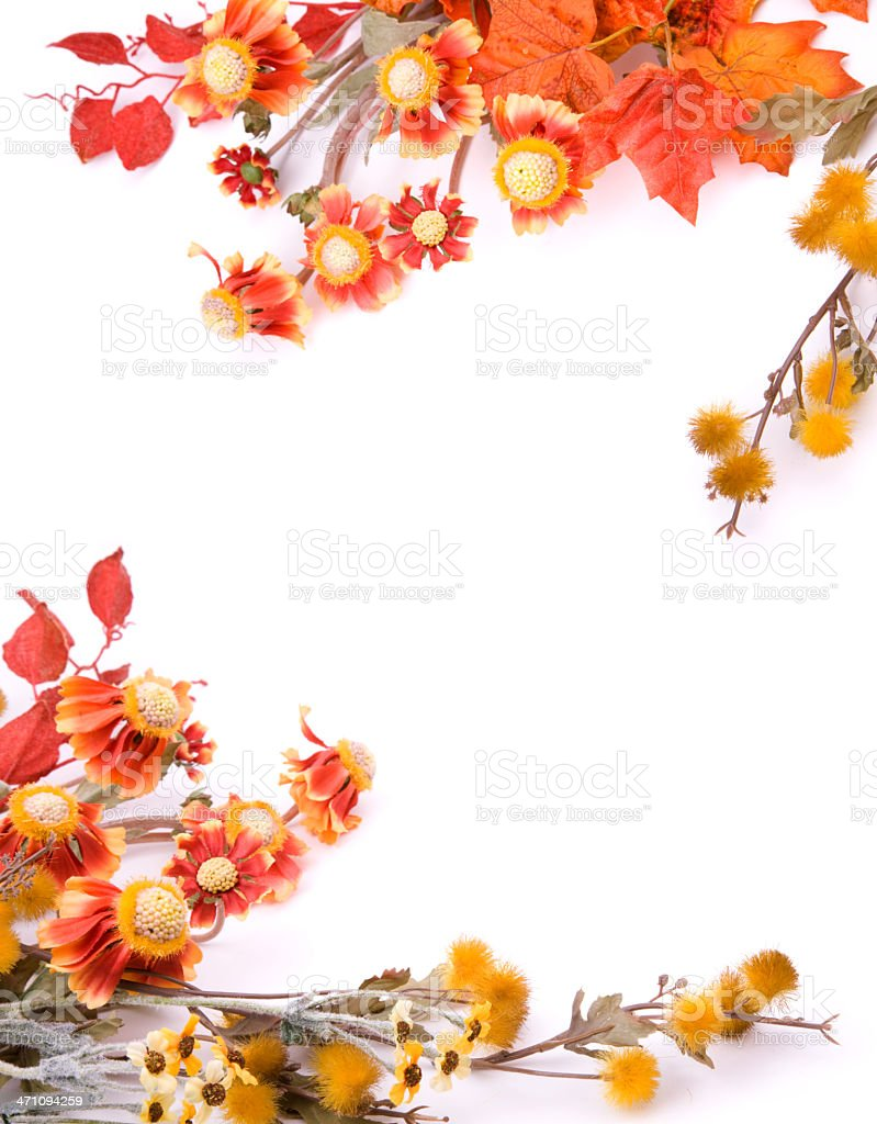 Fall Leaves Wallpaper Border Autumn Floral Border Stock Photo Amp More Pictures Of