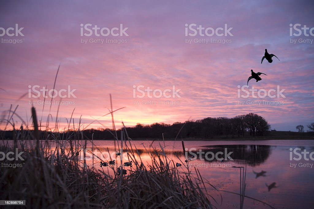 Black Camouflage Wallpaper Royalty Free Duck Hunting Pictures Images And Stock