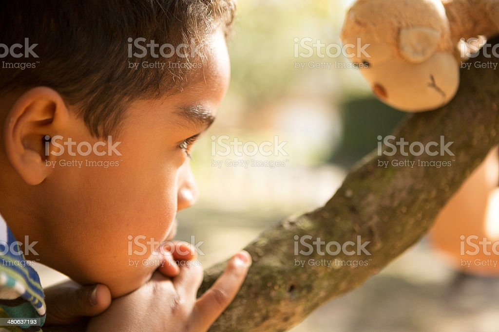 Royalty Free Monkey Toy Pictures Images And Stock Photos