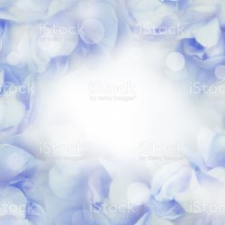 Sweet Pastel Flowers Background Stock Photo More Pictures Of