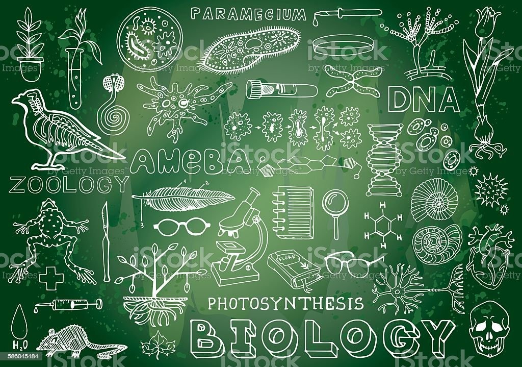 Cute Doodle Wallpaper Hd Biology Science Doodle Hand Drawing Elements Science And