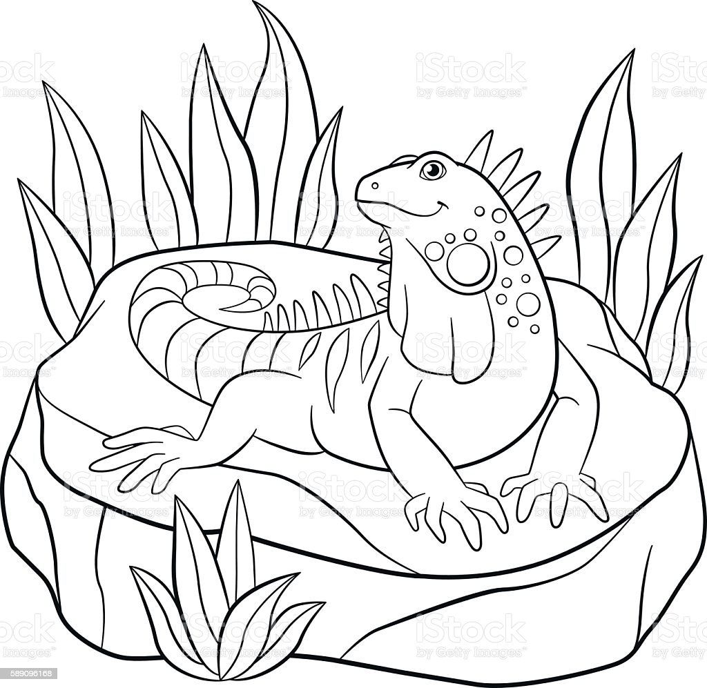 coloring pages cute iguana sits on the rock vector id589096168?quality=80&strip=all bmw e46 320d fuel filter change auto electrical wiring diagram