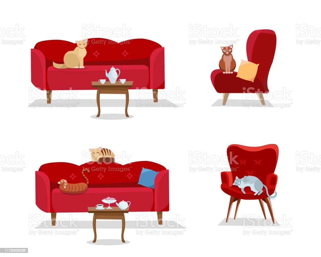 Designer Sofas Set 5 Cats Sit On Red Comfortable Sofas And Soft Designer Armchairs On White Background Cat Is Sitting And Lying Furniture Attached Table With Coffee Cups Flat Cartoon Style Vector Illustration Stock