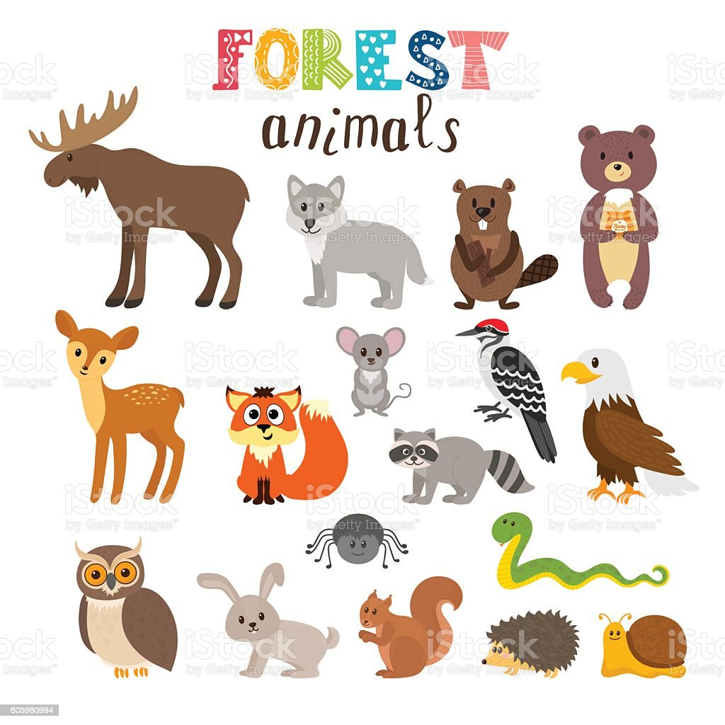 Fall Woodland Creatures Wallpaper Set Of Cute Forest Animals In Vector Woodland Cartoon