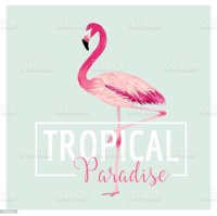 Tropical Bird Flamingo Background Summer Tshirt Design