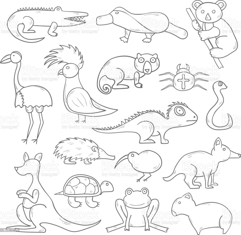 Australian Animals Drawings Vector Cartoon Illustration With Hand Drawn Australia Animals Icons