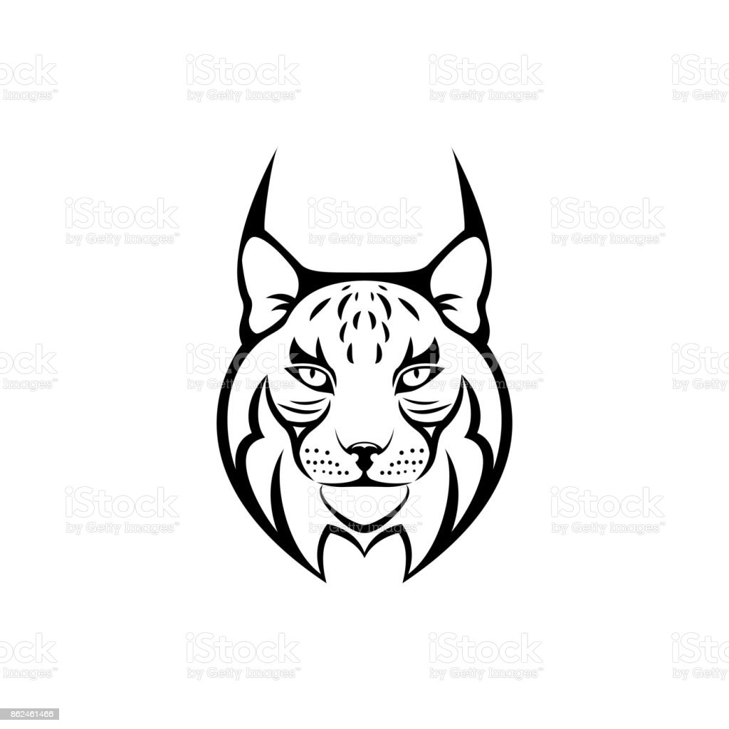 Bobcat Wallpaper Hd Vector Lynx Head Face For Retro Icons Emblems Badges