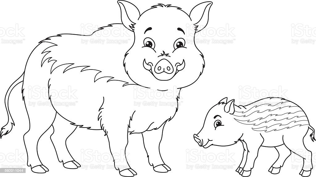 Wild Boar Coloring Page Stock Vector Art More Images Of