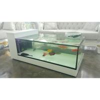Fish Tank Coffee Table Aquarium, Furniture on Carousell
