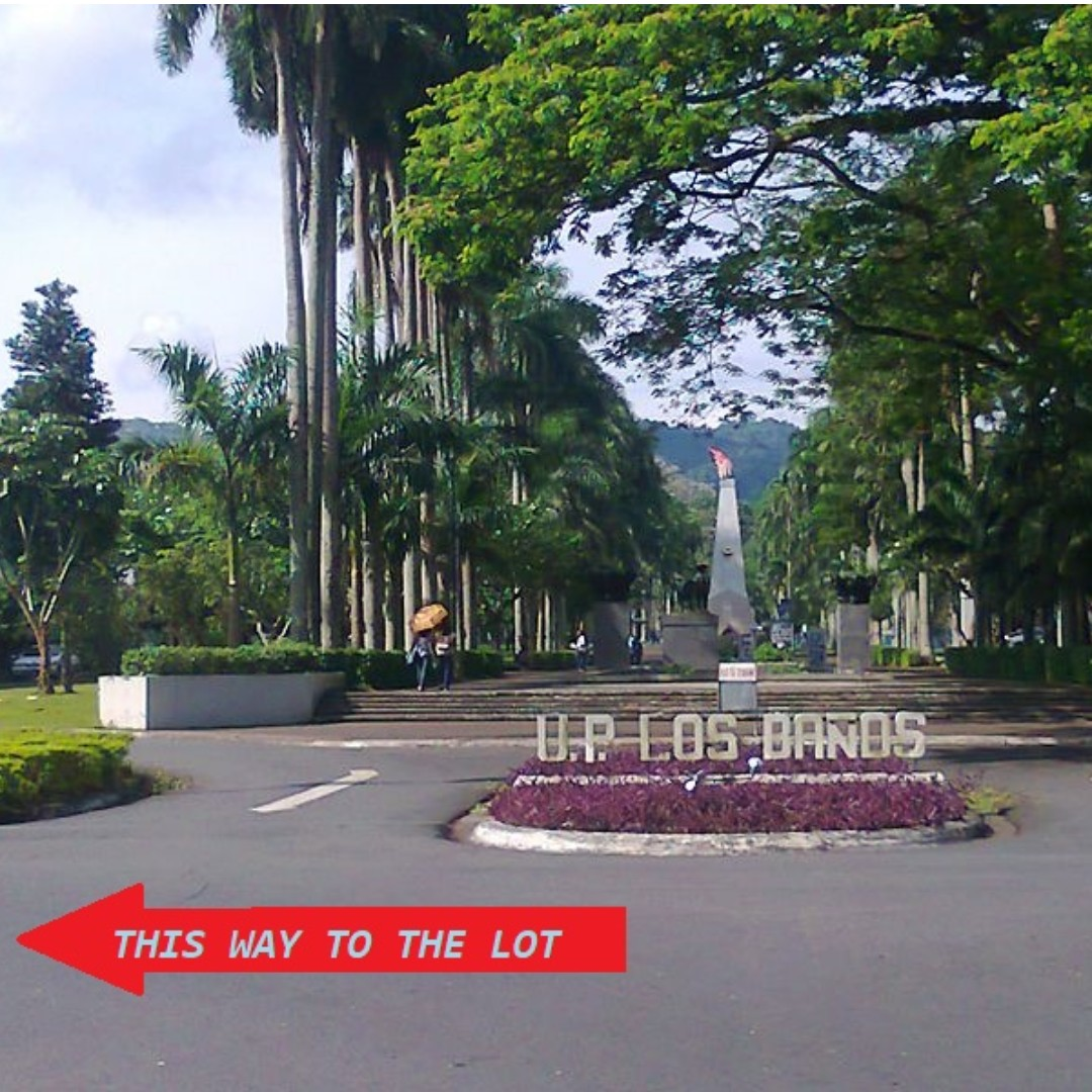 Los Baños Lot Near Up Campus For Lease Los Banos