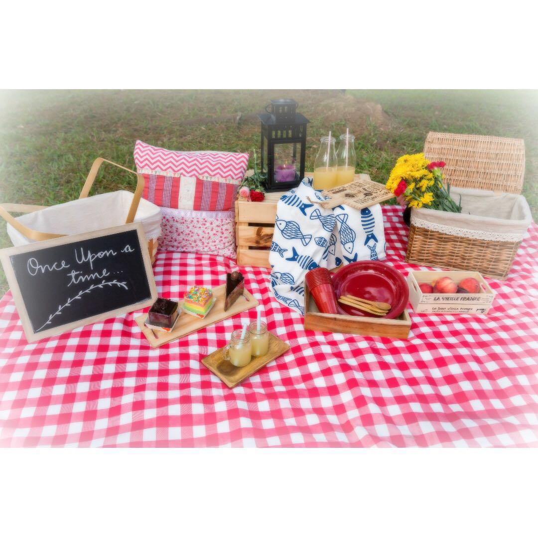 Picnic Decor Picnic Decor Styling Outdoor Decor Styling For Photoshoot