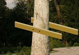 Casa sull'albero: fase 1