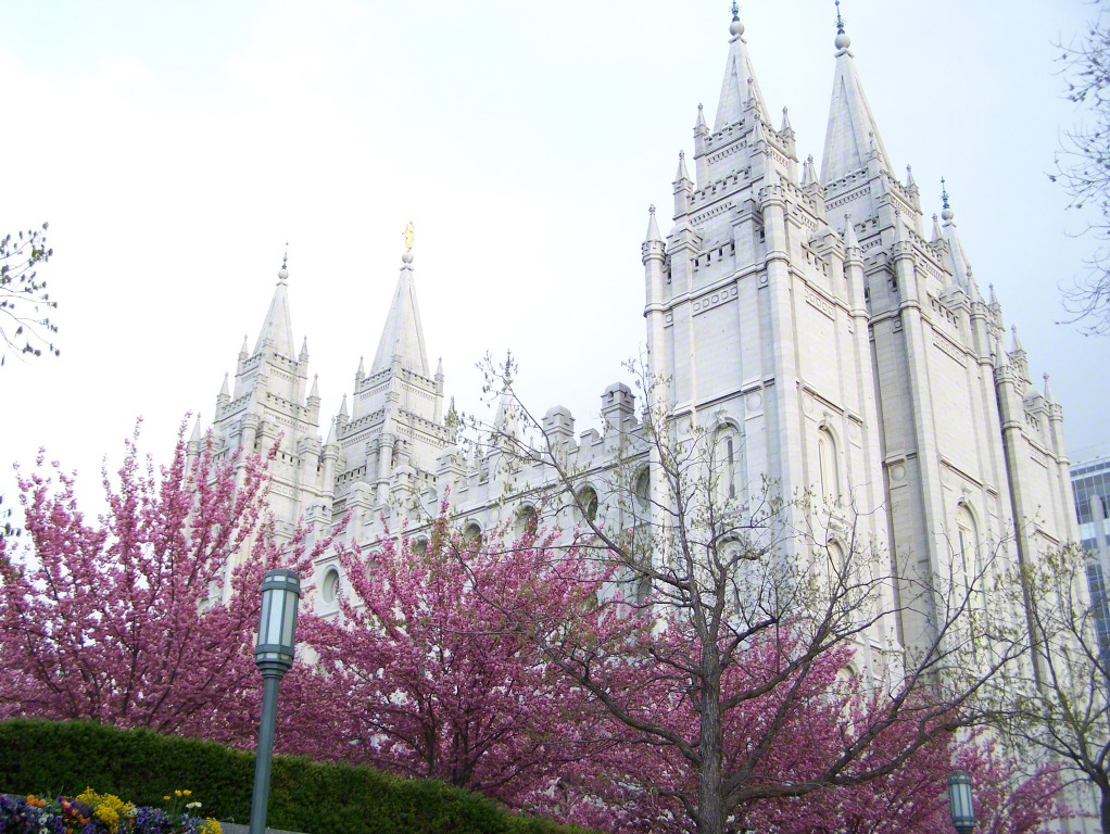 Temple Quotes Wallpaper Pc Hd Salt Lake Temple In The Spring