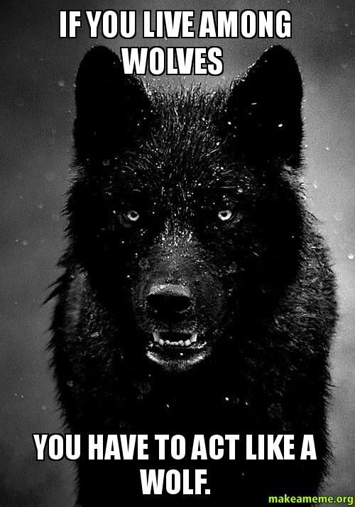 Lone Wolf Wallpaper Quote If You Live Among Wolves You Have To Act Like A Wolf
