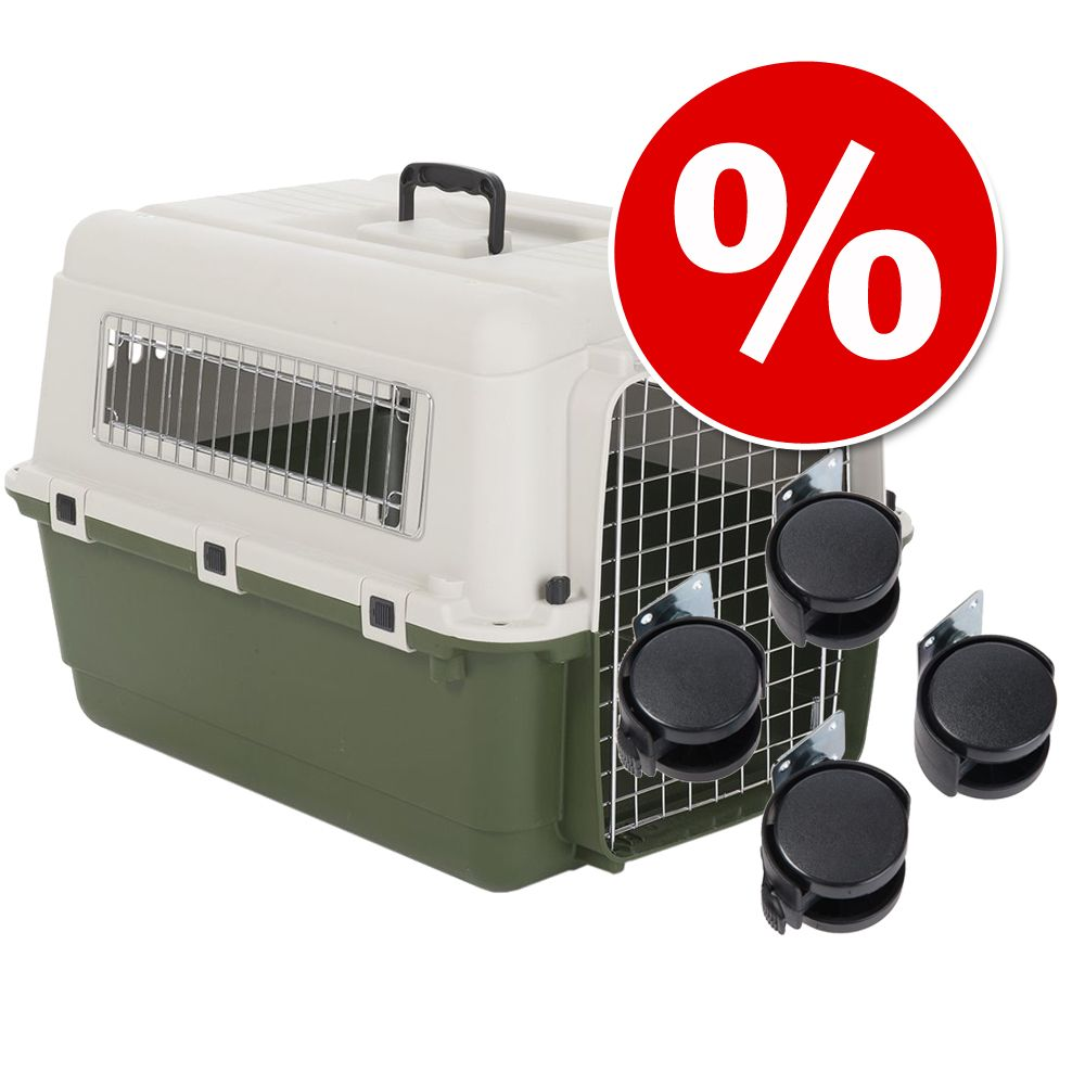 Kunststoff Transportbox Transportbox Kunststoff Alu Food For Pets