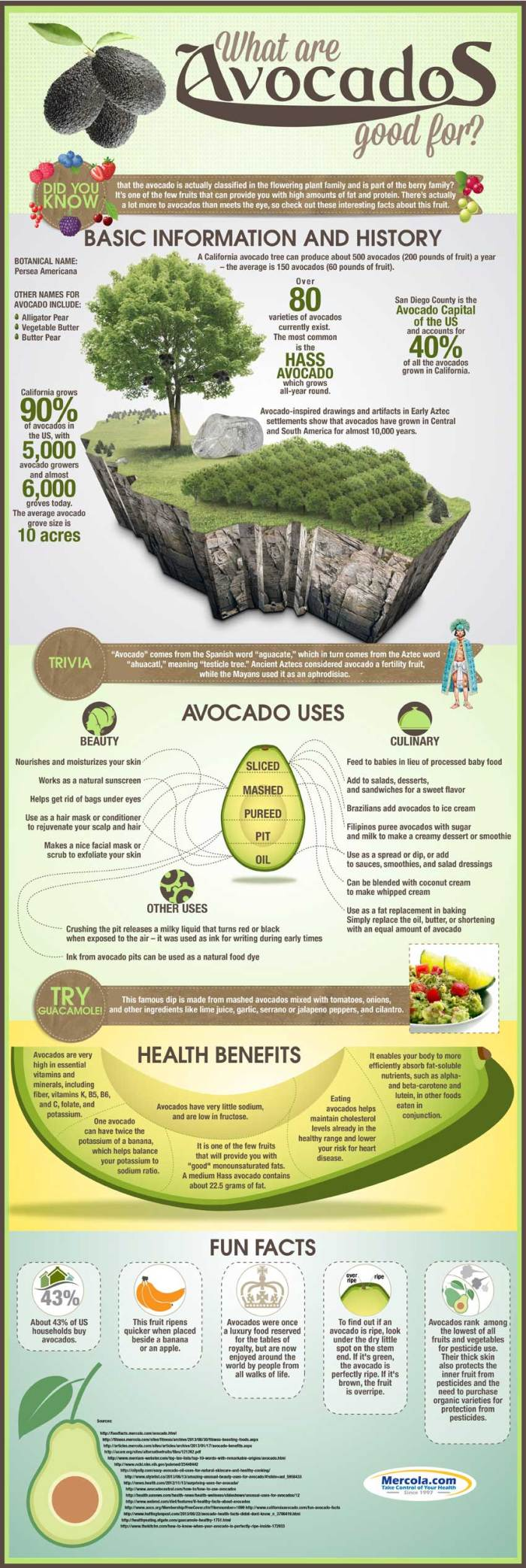Are avocados healthy? www.tasteofdivine.com