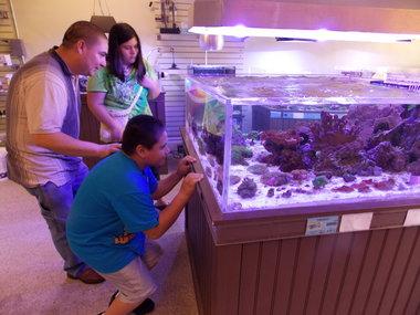 Zeeland aquarium business up for sale on Craig's List | MLive.com