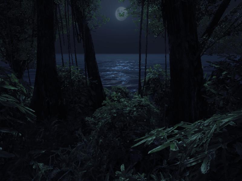 Merlin Wallpaper Hd Night Jungle Image Chris Sloany Mod Db