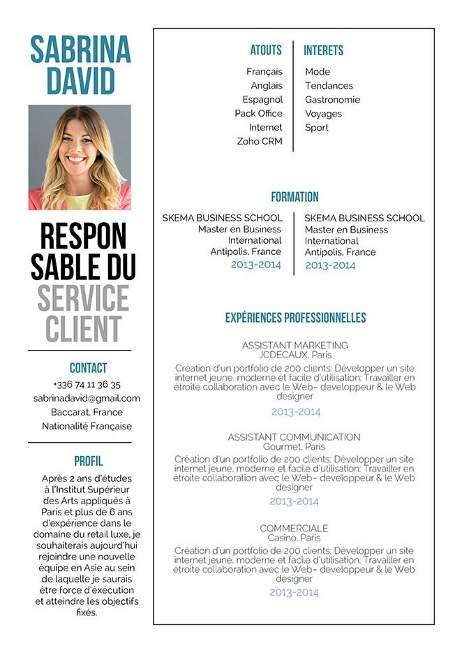 modele de cv webmarketing