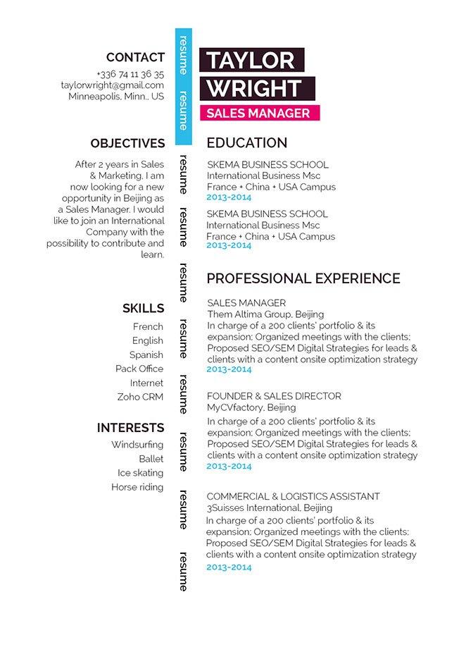 professional Resume Gorgeous Resume · myCVfactory