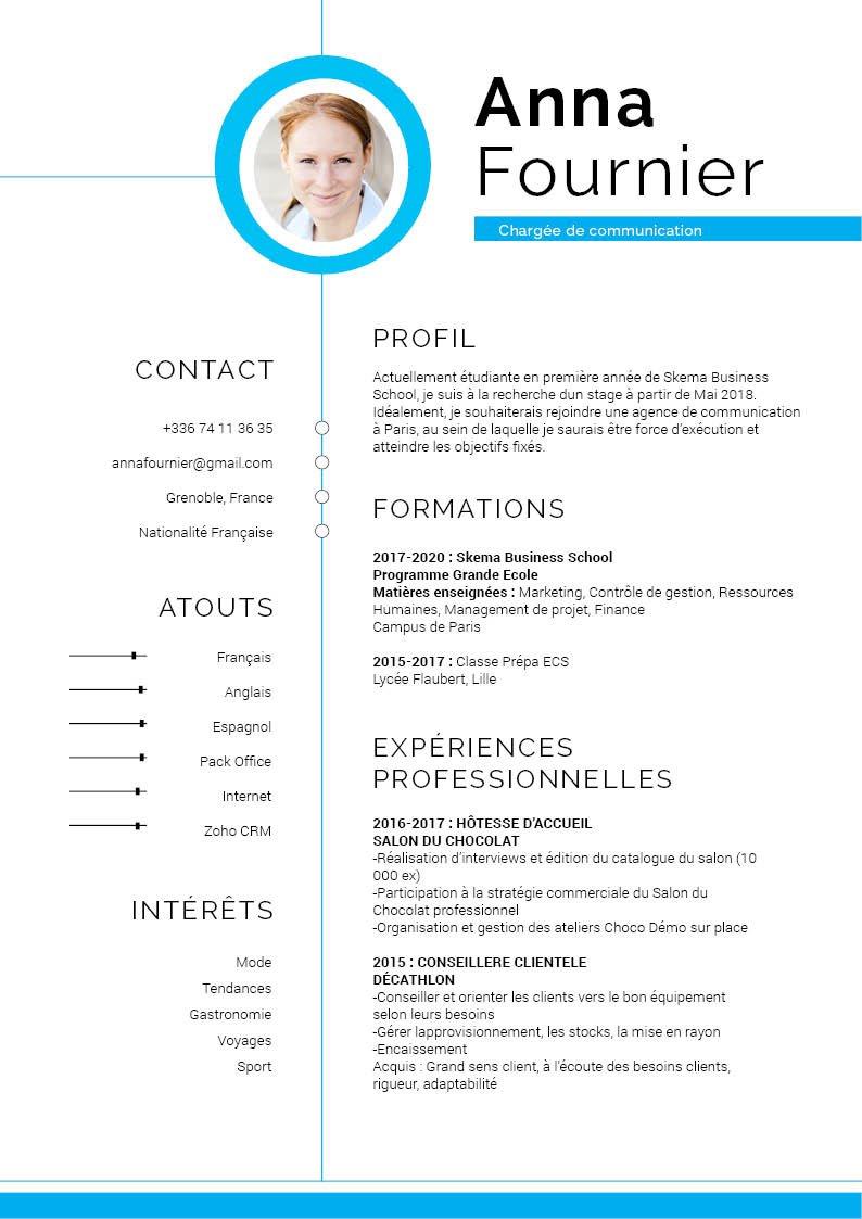 cv en ligne pour professionnel