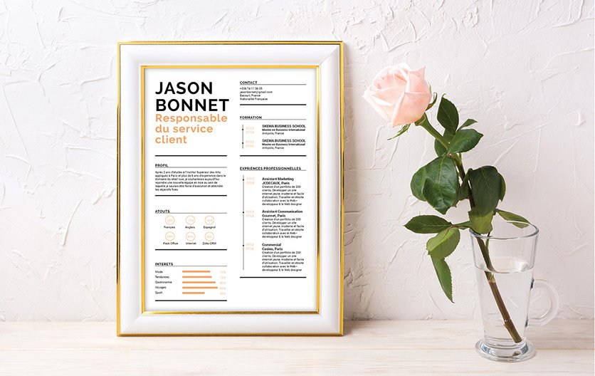 template cv soigne word
