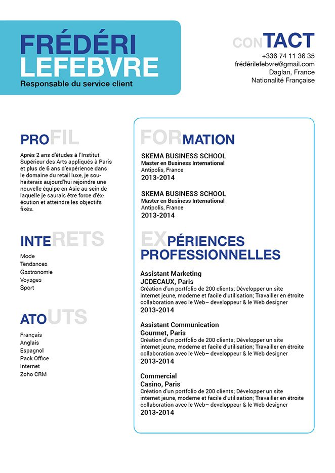 cv icones contact en ligne
