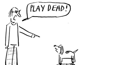 One More For Dog Week Month The New Yorker