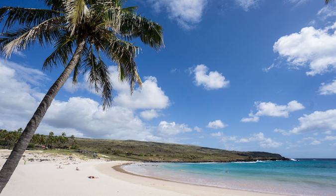 remote beach on Easter Island, with a palm tree and white sand