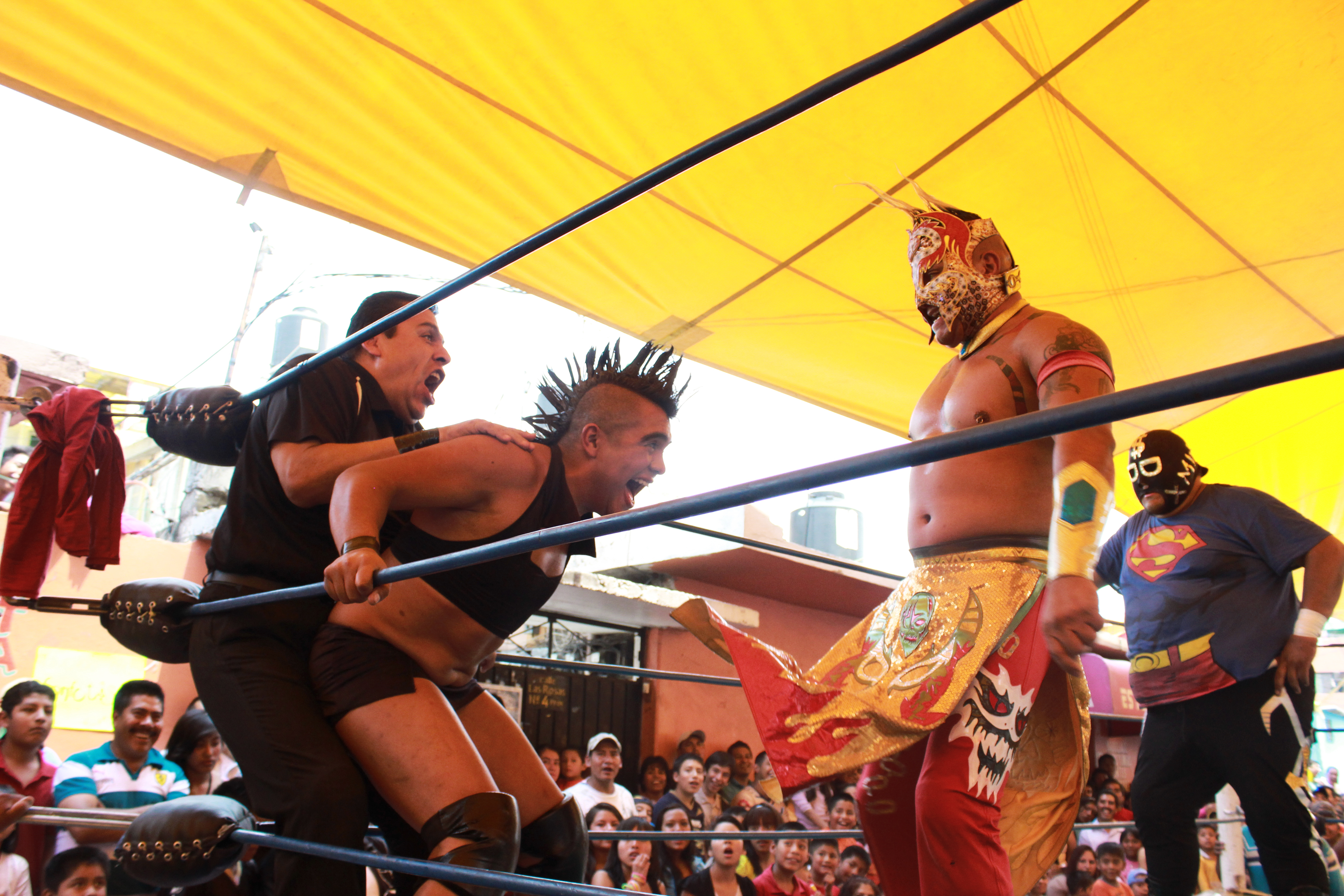 Lucha Libre Gay Porno Gay Pro Wrestling Fans Porno Photo